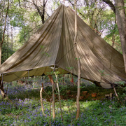 Woodland basecamp